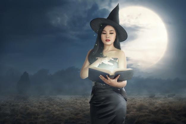 Inchipuirile scriitorului, Vrajitorul din Oz